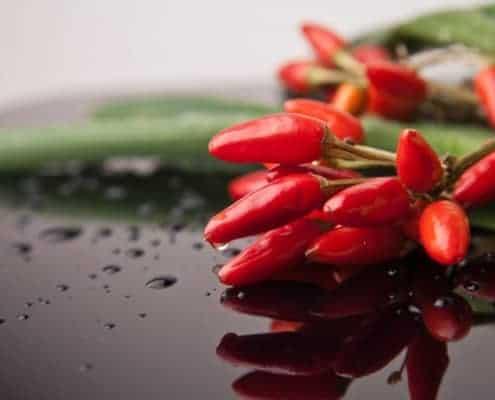 scharfe gesunde Chili