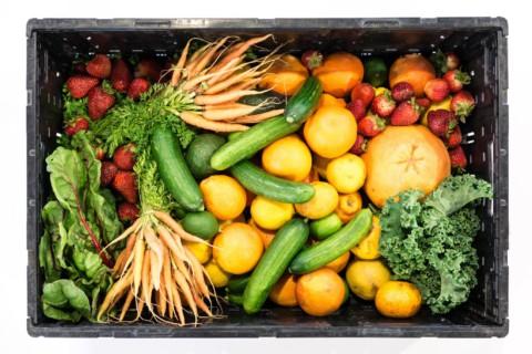 Grünkohl Zubereitung ohne Fleisch