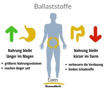 Infografik zu Ballaststoffen im Magen und Darm