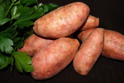 Süßkartoffel als gesunde Kohlenhydrate