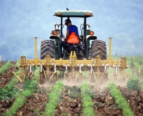 Bio-Produkte sind gesünder
