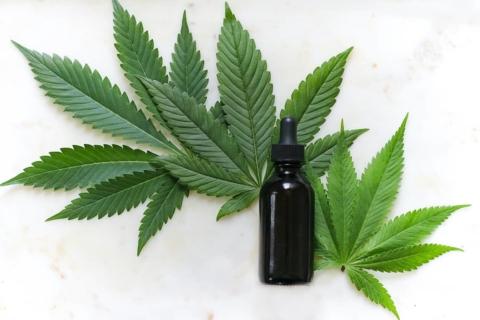 CBN Cannabis Wirkstoff